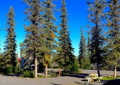 Northern-Nights-Campground-Site