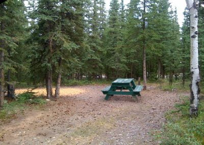 private-wooded-tent-sitessourdough-campground-rv-alaska