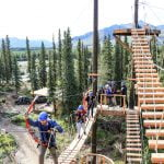 denali-park-zipline-group