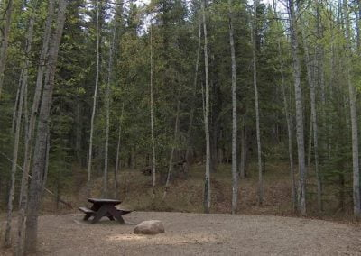 Kiskatinaw Provincial Park Camp Site Photo